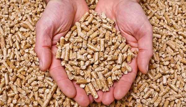 Ahorra energía en tu hogar con una estufa de pellets