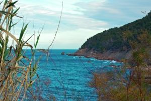 Playas de Mallorca, pasión y baños al sol