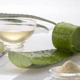 Prepare su propia crema hidratante con aloe vera