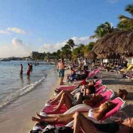 Nadar con los delfines en Cancún. Una experiencia única y entrañable en Semana Santa