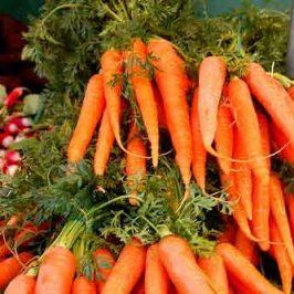 Zanahorias con picatostes